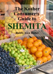 shemita cover for site